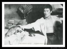 Брюс Ли, фото из фильма Путь дракона 00024